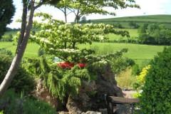 Ein toller Garten zur Erholung
